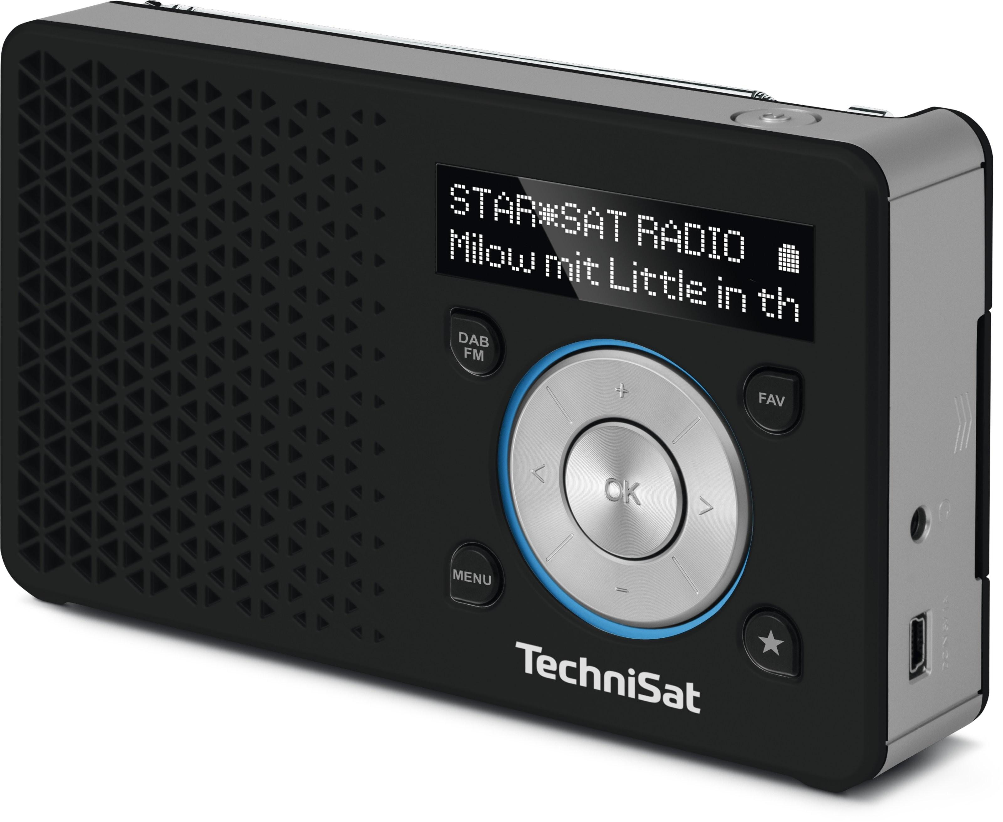 TechniSat DIGITRADIO 1, schwarz / silber